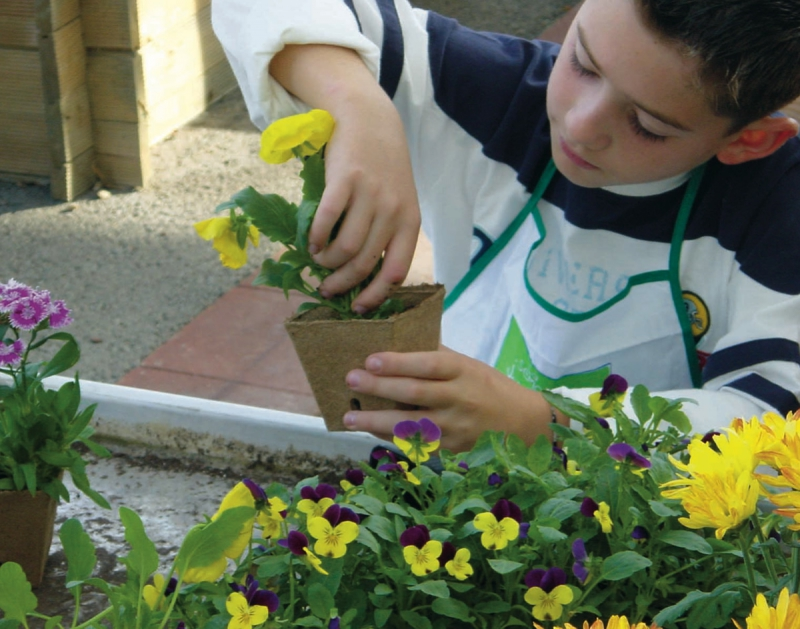 atelier p dagogique la plantation de fleurs