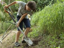 Les outils de base au jardin
