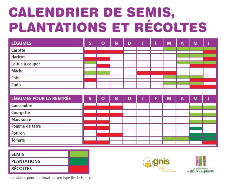 calendrier de plantation de legumes fort de france 36