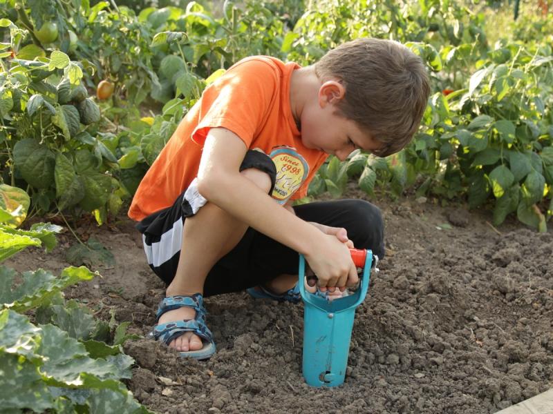 Les outils de base au jardin for Objet de jardinage