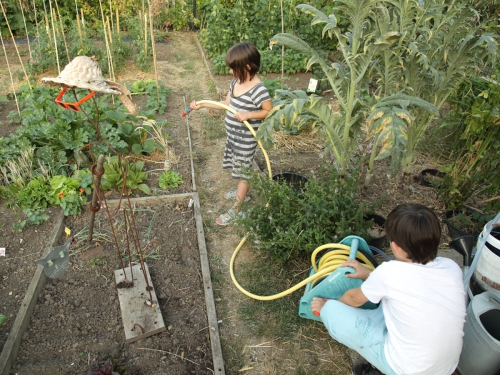 Activit pour la classe animaux amis ou ennemis du jardin for Site de jardinage