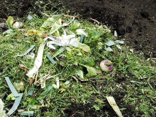 atelier p dagogique jardinage la d couverte du compost. Black Bedroom Furniture Sets. Home Design Ideas